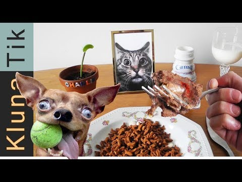 EATING ANIMAL FOOD  |#52 KLUNATIK COMPILATION    ASMR eating sounds no talk