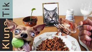 EATING ANIMAL FOOD  |#52 KLUNATIK COMPILATION    ASMR eating sounds no talk