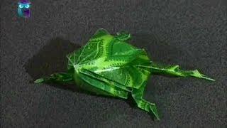 Оригами. Передача 14. Бумажный зоопарк. Делаем животных. Часть 1. Мастер класс