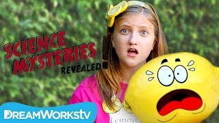 Why Are Lemons Sour?   SCIENCE MYSTERIES REVEALED