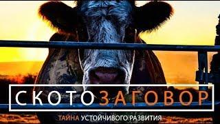 Скотозаговор (HD формат, озвучивание на русском языке)