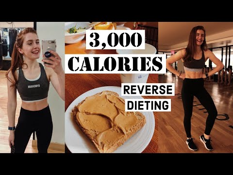 HOW I EAT 3,000 CALORIES A DAY