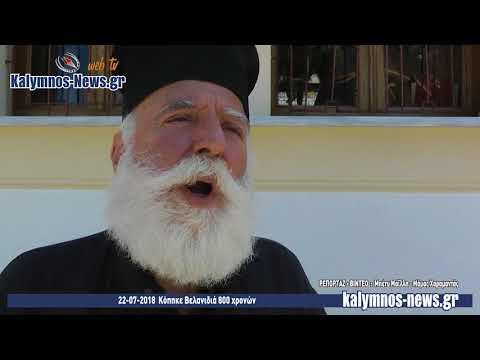 22-07-2018 Κόπηκε Βελανιδιά 800 χρονών