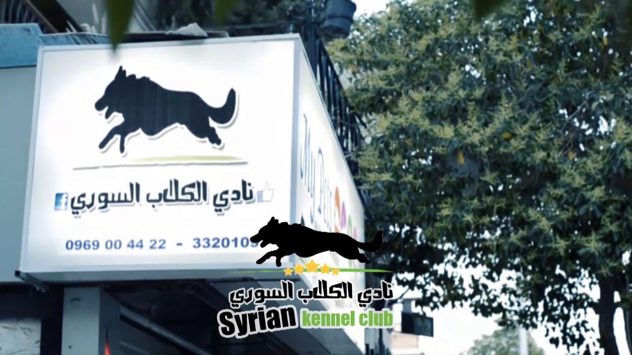 نادي الكلاب السوري My Pets Youtube