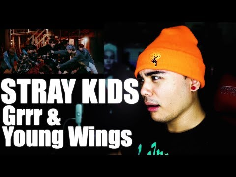 STRAY KIDS - Grrr & Young Wings Performance Video Reaction [GOT ME GROWLING]