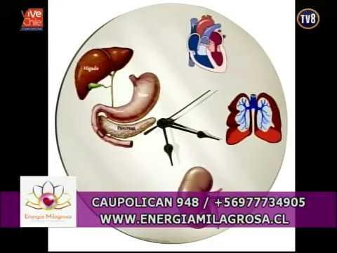 energÍa-milagrosa-reloj-biológico-medicina-china-(56)