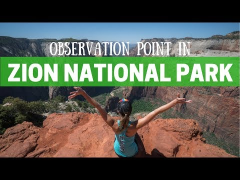 Zion's Observation Point Hike Guide