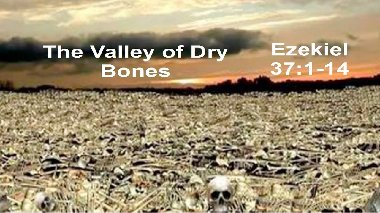 Valley of Dry Bones Bible The Valley of Dry Bones