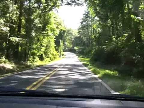 Cruising the Canopy Roads & Cruising the Canopy Roads - YouTube