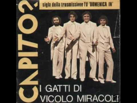 I Gatti Di Vicolo Miracoli - Capito