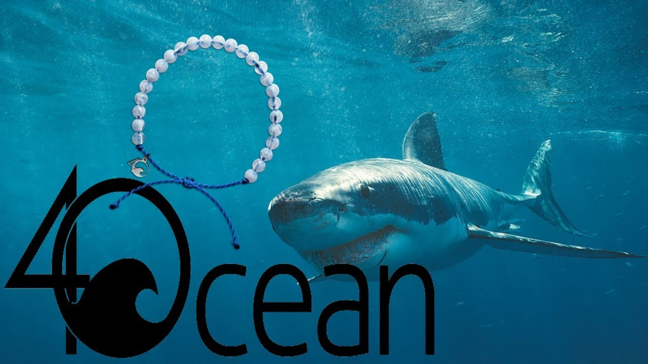 Ocean Shark Bracelet Unboxing And Review YouTube - 4ocean