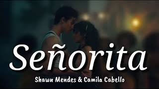 Download lagu Shawn Mendes Camila Cabello Señorita Lyrics Terjemahan Indonesia