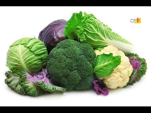 Curso a Distância Cultivo Orgânico de Brócolis, Couve-Flor e Repolho CPT