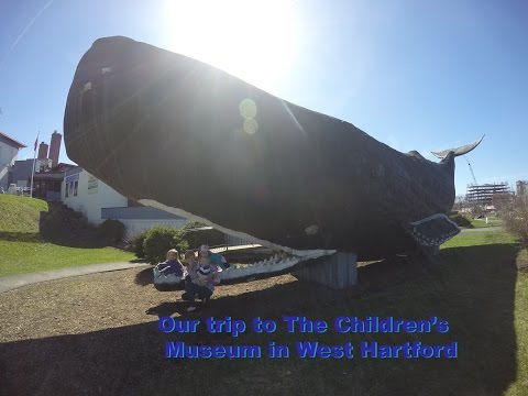 A Trip To The Children's Museum in West Hartford CT Connecticut Whale