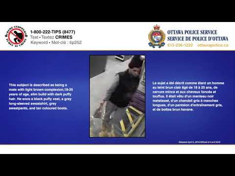 Ottawa Police Services: Jewelry store robberies