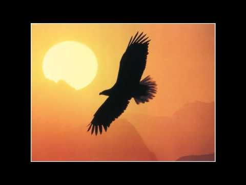 Steven Reineke - Where Eagles Soar