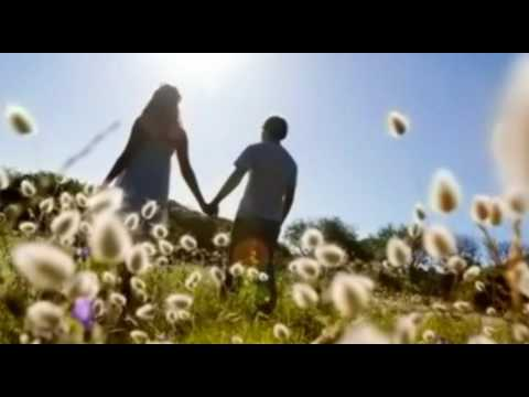 What Would They Say - Paul Williams (lyrics)