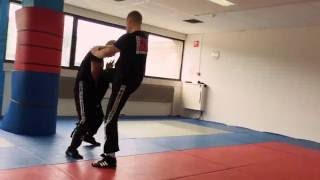 Expert 1 & 2  grading, Defense against a Roundhouse Kick.
