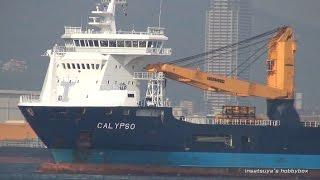 CALYPSO 重量物運搬船 Heavy-lift Ship