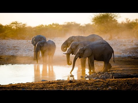 DREAM AFRICA - Adventure of a lifetime