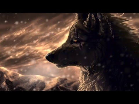 Lone Wolf by Hank Williams Jr- Lyrics
