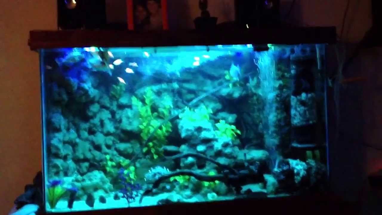 Diy aquarium lighting led strip lights youtube mozeypictures Image collections