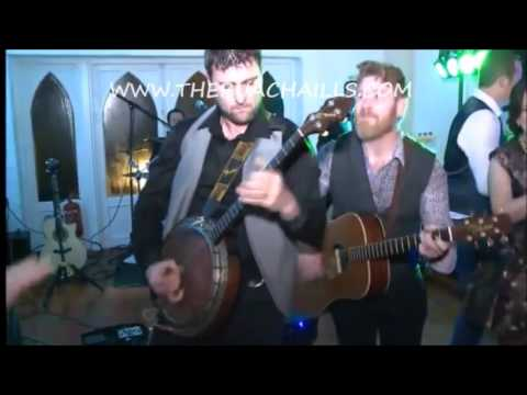 The Buachaills  , Live Wedding Band Ireland
