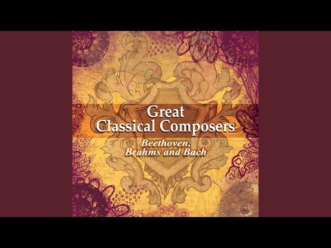 Piano Sonata No. 2 In F-Sharp Minor, Op. 2: I. Allegro Non Troppo, Ma Energico (Guitar Version)