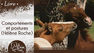 """""""Comportements et postures"""" - Hélène Roche vidéo"""
