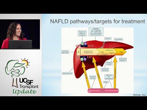 Fatty Liver Disease: New Therapeutics