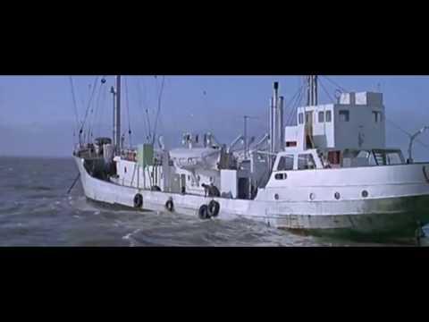 Offshore Radio Tunes & Tracks compil