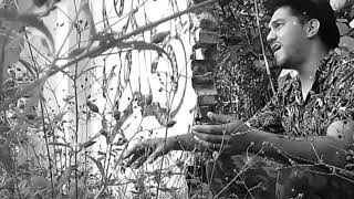 Ángel del Perdón- Tierra Negra Dúo- (Javi Caminos, Maiten Piedra). YouTube Videos