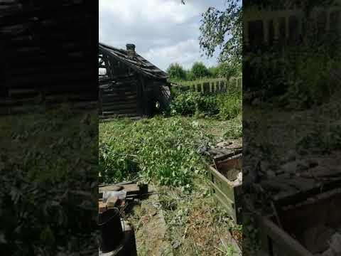 Деревня Петропавловка, траву косим, июль 2019