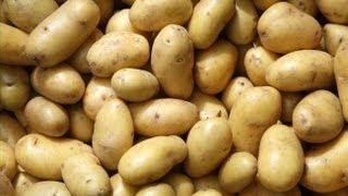 Crocche' di Patate - Cazzilli - Polpette di Patate
