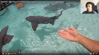 SWIMMING with SHARKS in BAHAMAS! FUNnel Vision Exuma Excursion Tour from ATLANTIS Part 2 - Reaction