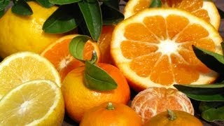 Growing Citrus Trees - Lemonade, Tangelo, Blood Orange & More!
