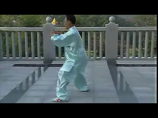 Zhang Zhi Jun - Tai Chi style Chen Xinjia Erlu [陈氏太极拳新架 Taijiquan style Chen]