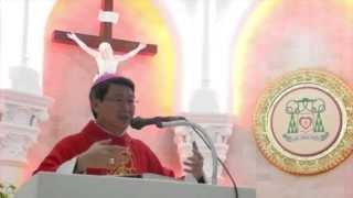 Đức Cha Phêrô giảng lễ tạ ơn hồng ân 7 năm Giám Mục