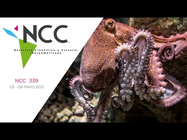 Noticiero Científico y Cultural Iberoamericano, emisión 339. 03 al 09 de mayo del 2021