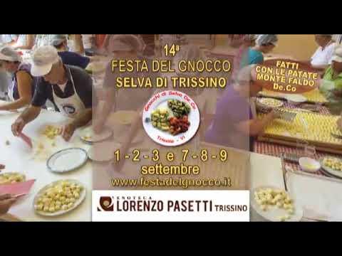 Video della 14a Festa del Gnocco a Selva di Trissino VI