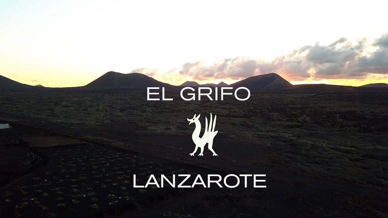 EL GRIFO. Proceso del vino de una bodega bicentenaria (1775) en Lanzarote.