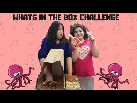 WHATS IN THE BOX CHALLENGE | AZee