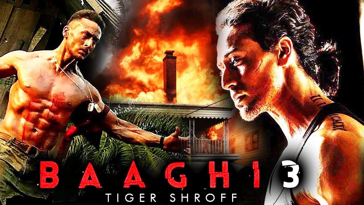 Image result for Baaghi 3