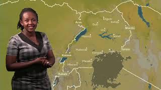 Weather forecast for 14 06 2019 by Daphine Kabasita Nsamba