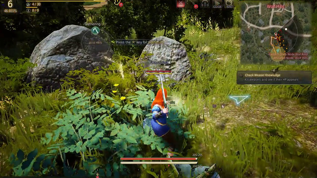 how to train life skill with donkey black desert online
