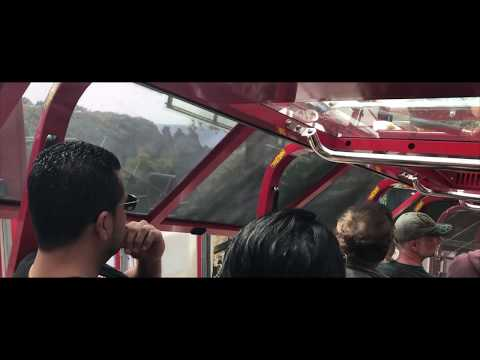 All Inclusive Deluxe Small-Group Tour of Blue Mountains - Video