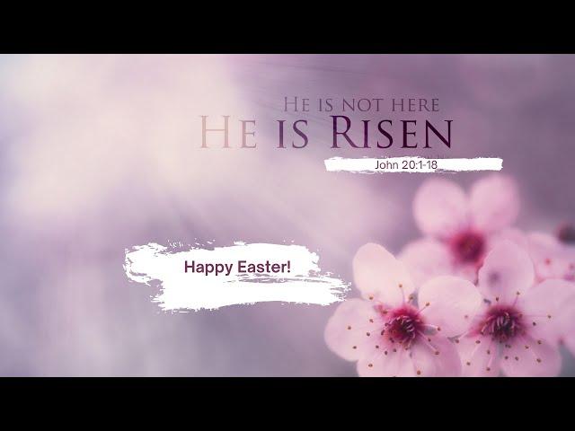 Easter Sunday Live Stream