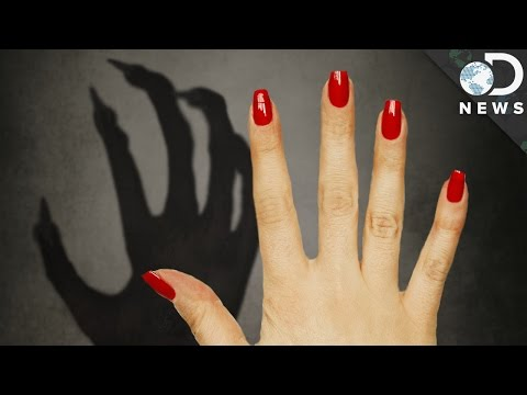 Why Do We Have Fingernails and Not Claws? #AskDNews