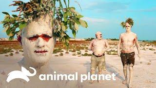 """Frank disfruta del """"original baño maya""""   Wild Frank   Animal Planet"""