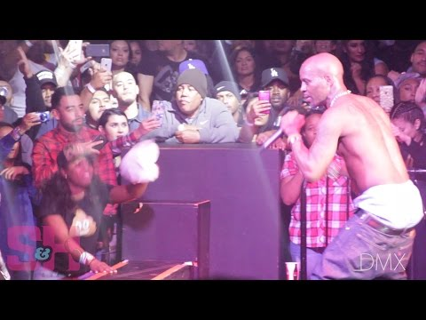 DMX - What These Bitches Want (LIVE at The Observatory)